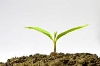 propagation equipment,soil mixer,greenhouse equipment,progrow soil mixer,agriculture equipment,horticulture equipment,farm equipment,small farm tools,four seasons tools